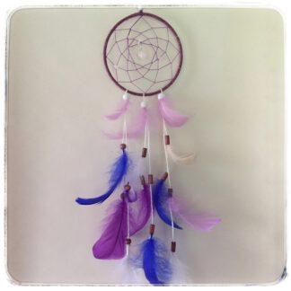 kokokuva violetti unisieppari sini-lila höyhenet