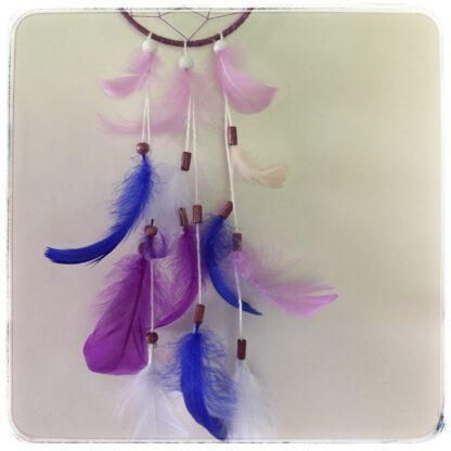 unisiepparin alaosa, jossa siniset, violetit ja valkoiset höyhenet