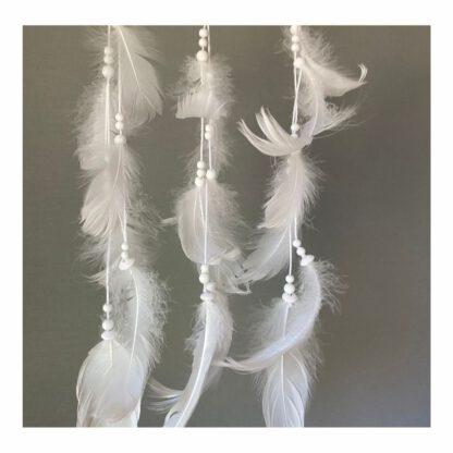 unisiepparin valkoiset höyhenlangat